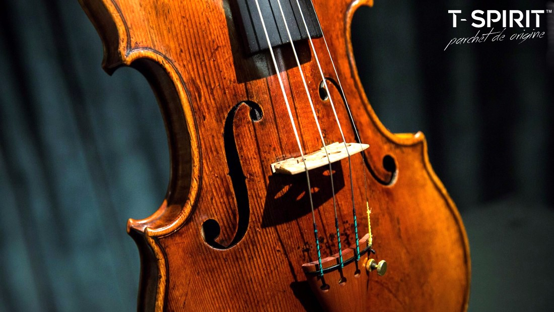 stradivarius3_copy.jpg
